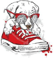 A beautiful dog in a red gym shoe. Hipster. vector