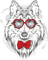 Beautiful dog in glasses with hearts. Hipster. vector