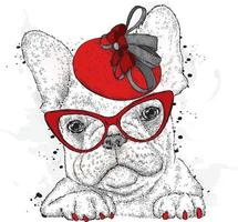 A beautiful dog in a hat and glasses. vector
