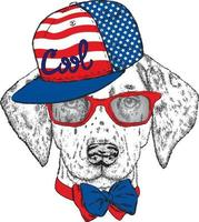 Hipster dog in a cap and glasses. vector