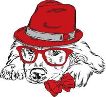 Hipster dog in a hat and glasses. vector