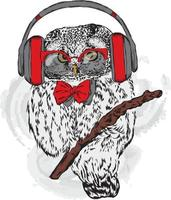 Funny owl hipster with glasses and headphones. vector