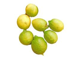 Green and yellow lemons isolated on a white background photo