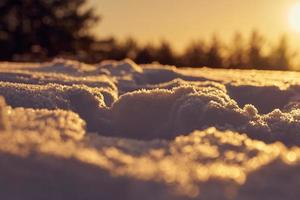 Snow during golden hour photo