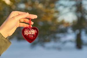 Hand holding a red heart photo