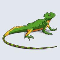 Hand drawn colorful lizard vector