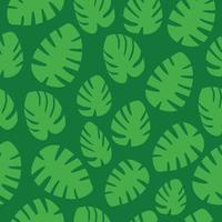 patrón de hojas de monstera vector
