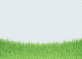 Simple Green Grass Bottom Edge Border Background vector