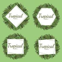 Tropical leafs background, green illustration vector design
