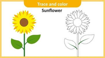 Trace and Color Sunflower vector