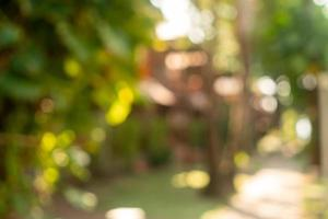 Blur nature bokeh green park by the beach and tropical coconut trees in sunset time