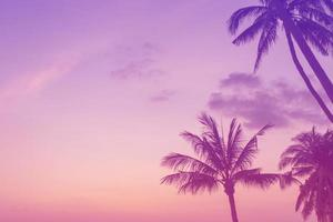 Tropical beach with sunlight, colorful pink purple background