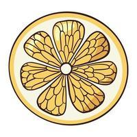 Line drawing organic flat lemon slice icon vector