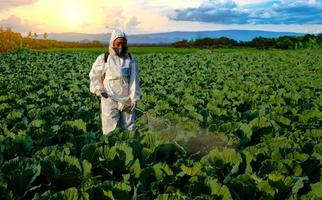 Gardener in a protective suit spraying fertilizer photo