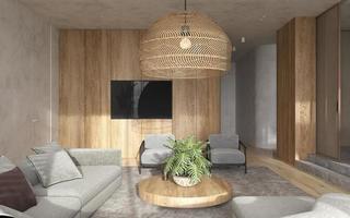 Minimalist living room photo