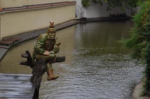 ogro sentado cerca del río. foto