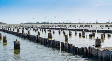 Vigas de madera vieja en el agua con gaviotas y cometas en el fondo foto