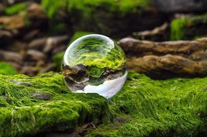 bola de cristal sobre musgo foto