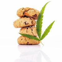 Homemade cookies with hemp oils isolated on a white background photo