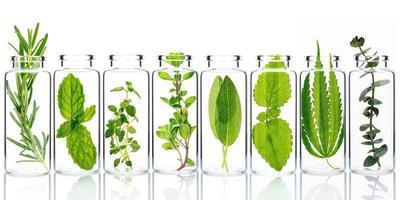 Botellas de hierbas frescas aisladas sobre un fondo blanco. foto