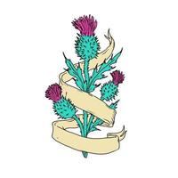 Scottish Thistle With Ribbon, Color Drawing vector