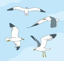 movimientos de varias gaviotas. ilustraciones de diseño de vectores de estilo dibujado a mano.