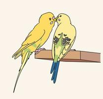Two canaries sit affectionately. hand drawn style vector design illustrations.