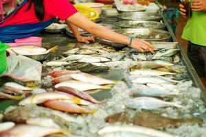 El enfoque selectivo en manos del vendedor recogiendo pescado fresco crudo foto