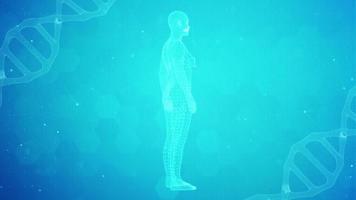 Figura humana feminina 3 d girando sobre um fundo de estilo científico
