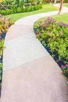 Path way in the garden