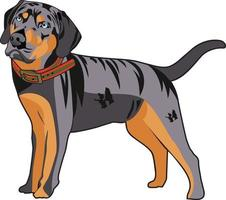 Cool dog character illustration vector