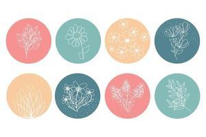 resaltar portadas para el vector de historias de redes sociales. círculos multicolores con flores y hojas. iconos botánicos florales redondos. perfecto para bloggers, marcas, stickers, wending, diseño, decoración