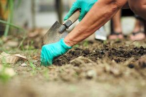 Selective focus on hand of gardener removing weeds