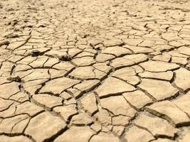 Lodo seco roto por problemas áridos foto