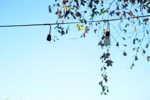Selecitve focus light bulbs hanging on the electricity wire with blurred leaves and clear sky in background