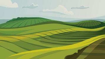 Green agricultural fields. vector