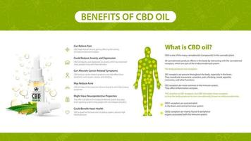 Information poster of CBD oil benefits. What is CBD oil, white poster in minimalism style with infographics, endocannabinoid receptors in the human body and cannabidiol benefits list
