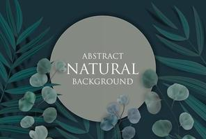 Abstract Natural Background with Frame, Tropical Palm, Eucalyptus,Monstera Leaves. Vector Illustration