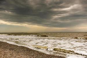 Coastline of seashells on a background of sea and blue sky photo