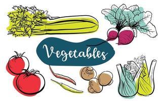ilustración de arte de línea vegetal comida natural vegetariana saludable vector