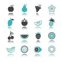 fruit icons with reflection vector