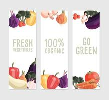 Three vertical banner templates with fresh organic vegetables and place for text. Colorful hand drawn natural food on white background. Vector illustration.