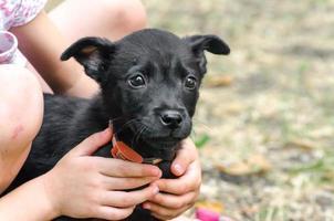 niño sosteniendo un cachorro negro foto