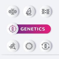 genetics line icons set, genetic modification, dna test vector