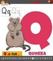 letter Q from alphabet with cartoon quokka animal character