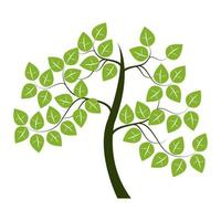 Tree Icon On White Background vector
