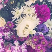 hermoso fondo de flores foto