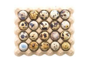 Quail eggs isolated photo
