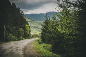 Mountain road with trees