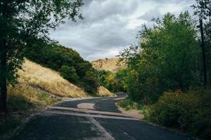 carretera en el bosque foto